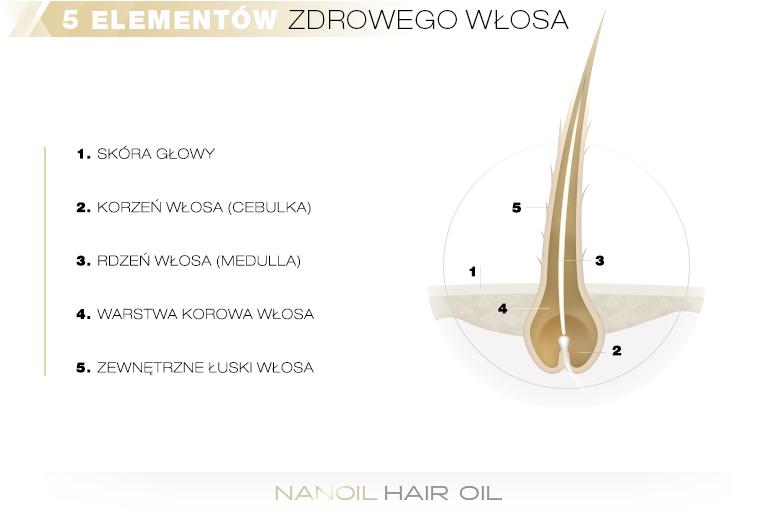 5 elementów zdrowego włosa